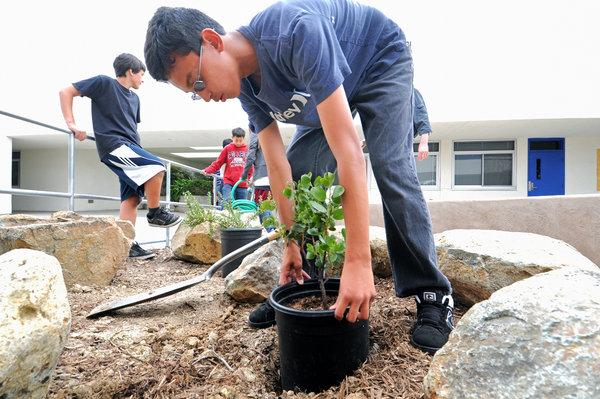 San Marcos Middle School Native Plants